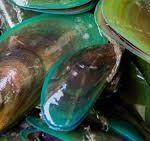 groenlipmosselen