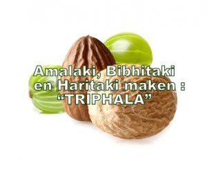 Triphala-met-haar-3-vruchten
